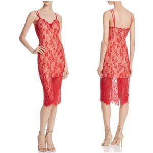 ALL SIZES NWT Keepsake Love Affair Lace Dress